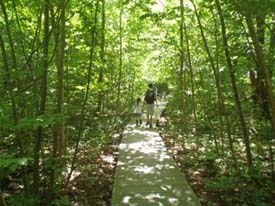Broad Meadow Brook Conservation Center & Wildlife Sanctuary