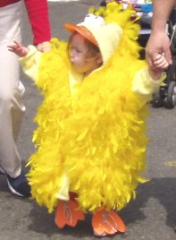 Duckling Day Parade on Boston Common