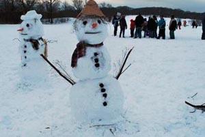 Franklin Park Snow Festival