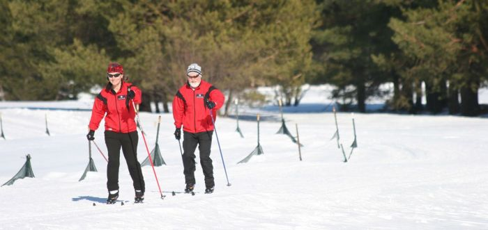Cross Country Skiing Near Boston Bretton Woods Nordic