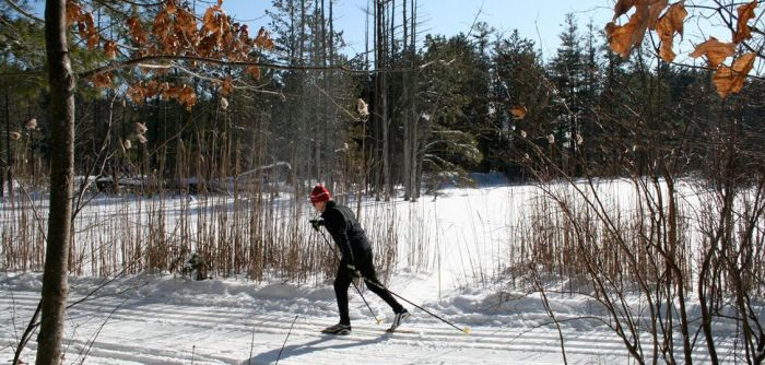Cross Country Skiing Near Boston Great Brook Farm