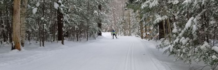Cross Country Skiing Near Boston Gunstock