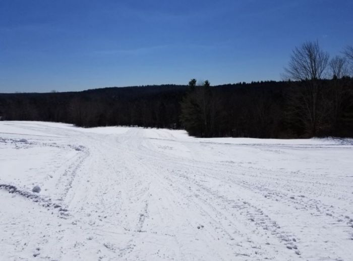 Cross Country Skiing Near Boston  Maple Corner Famr