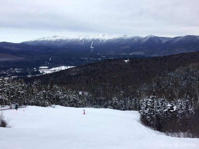 bretton woods skier with mount washington background