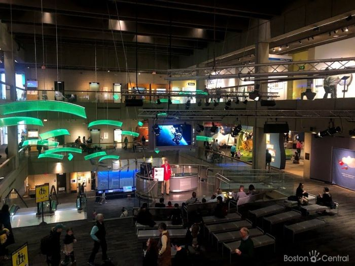 Boston Museum of Science with Kids