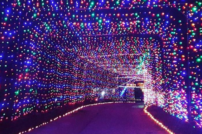 Loudon Christmas Lights 2020 Boston Holiday Events: Lights and Celebrations 2020