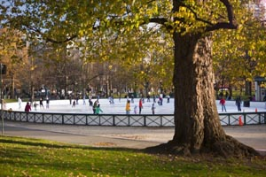 frog pond ice skating photo