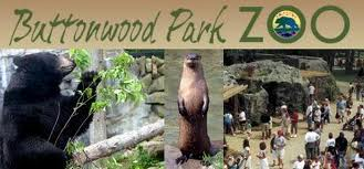 buttonwood park zoo photo