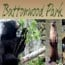 buttonwood park zoo small photo