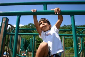 nara park  playground photo