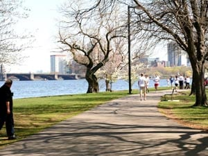 the charles river esplanade photo