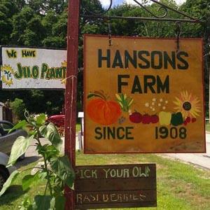 hanson's haunted hayride photo