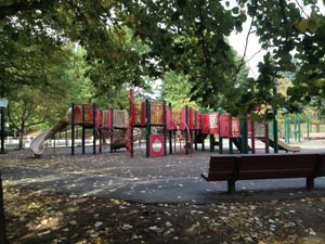 Johnson Playground and Stony Brook Spray Deck