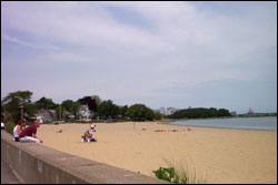 wollaston beach photo