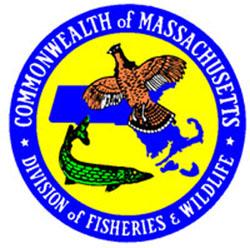 where to fish in massachusetts photo