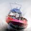 codzilla high-speed boat rides opens june 4 small photo
