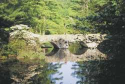 maudslay state park photo