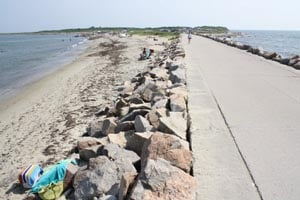 horseneck state beach photo