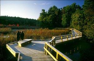 broadmoor wildlife sanctuary photo