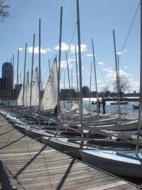 community boating  sailing photo