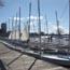 community boating  sailing small photo
