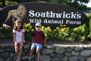 drive-thru zoofari at southwick zoo photo