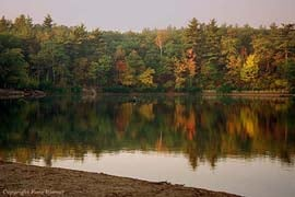 walden pond state reservation photo