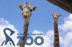 roger williams park zoo photo