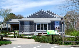 cape cod museum of natural history photo