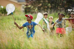 mass audubon summer camps photo