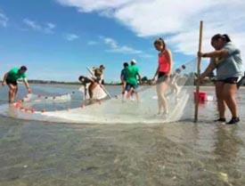 coastal ocean science academy summer programs photo