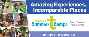 trustees of reservations summer camps 7 venues photo