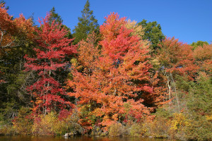 great spots to view fall foliage - new england photo