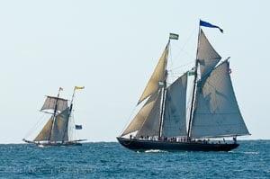 annual gloucester schooner festival photo