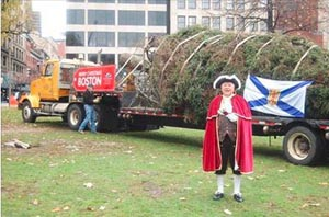 boston christmas tree arrival 2019 photo
