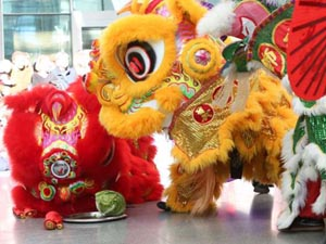lunar new year celebration at the museum of fine arts mfa photo