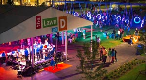 summer block party at the lawn on d photo