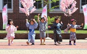 8th annual brookline cherry blossom festival photo