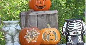 not so spooky halloween at edaville family theme park photo