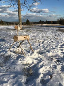 january reindeer quest at weir river farm photo