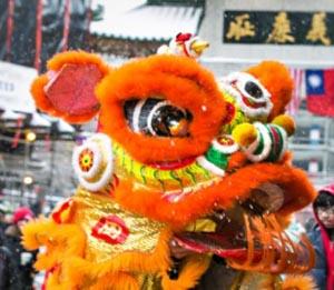 boston chinese new year parade 2020 photo