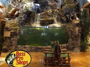 bass pro shops - aquarium and fish feeding photo