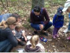 forest fridays at discovery woods photo