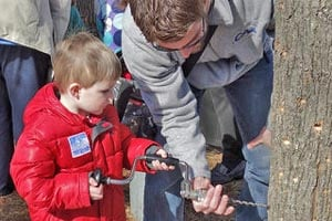 maple sugar days at breakheart reservation photo