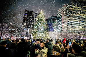 snowport - boston seaport ice rink photo