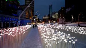 'entre les rangs' light exhibit at boston seaport photo