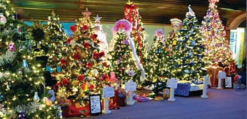 methuen's festival of trees photo