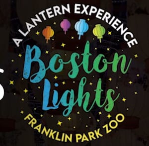 sold out boston lights a lantern experience at franklin park zoo photo