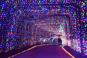 gift of lights at nh motor speedway photo