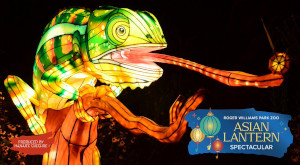 asian lantern spectacular at roger williams park zoo photo